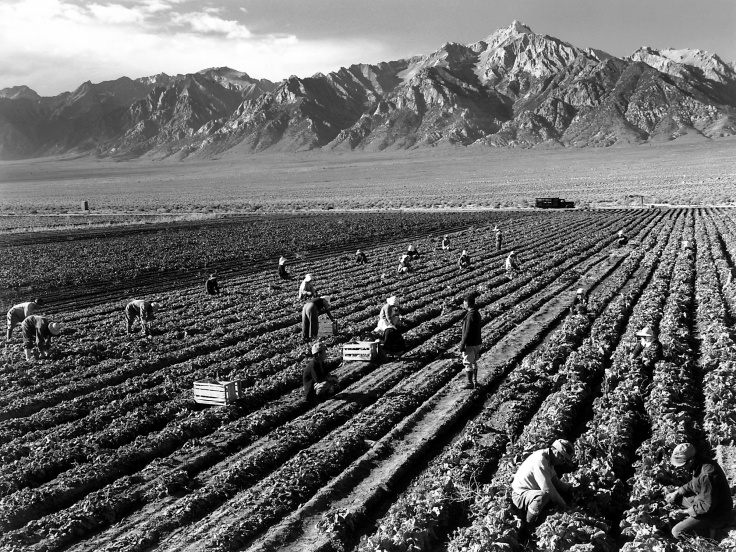 Ansel_Adams_-_Farm_workers_and_Mt__Williamson