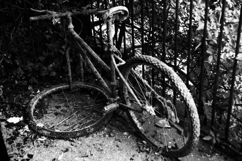 rusty bicycle bw