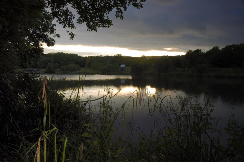 Wishing Tree Lake 1