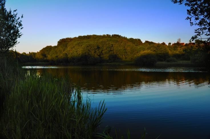 Wishing Tree Lake 3