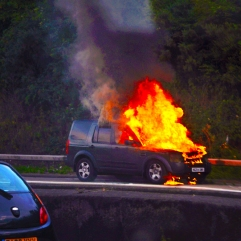 This created a fray on the motorway on a Sunday evening. Hopefully all got out safely.